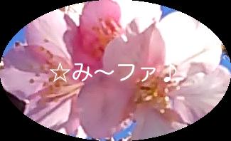 ☆み〜ファ♪