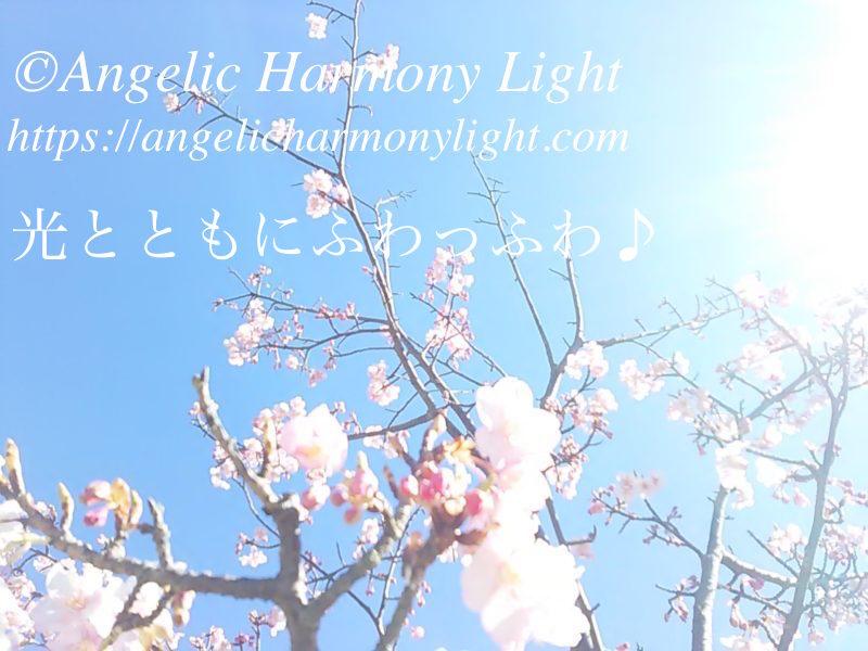 光とともにふわっふわ♪ by meefa 喜びの天使様ギフト