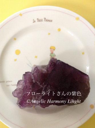紫色のフローライトさん