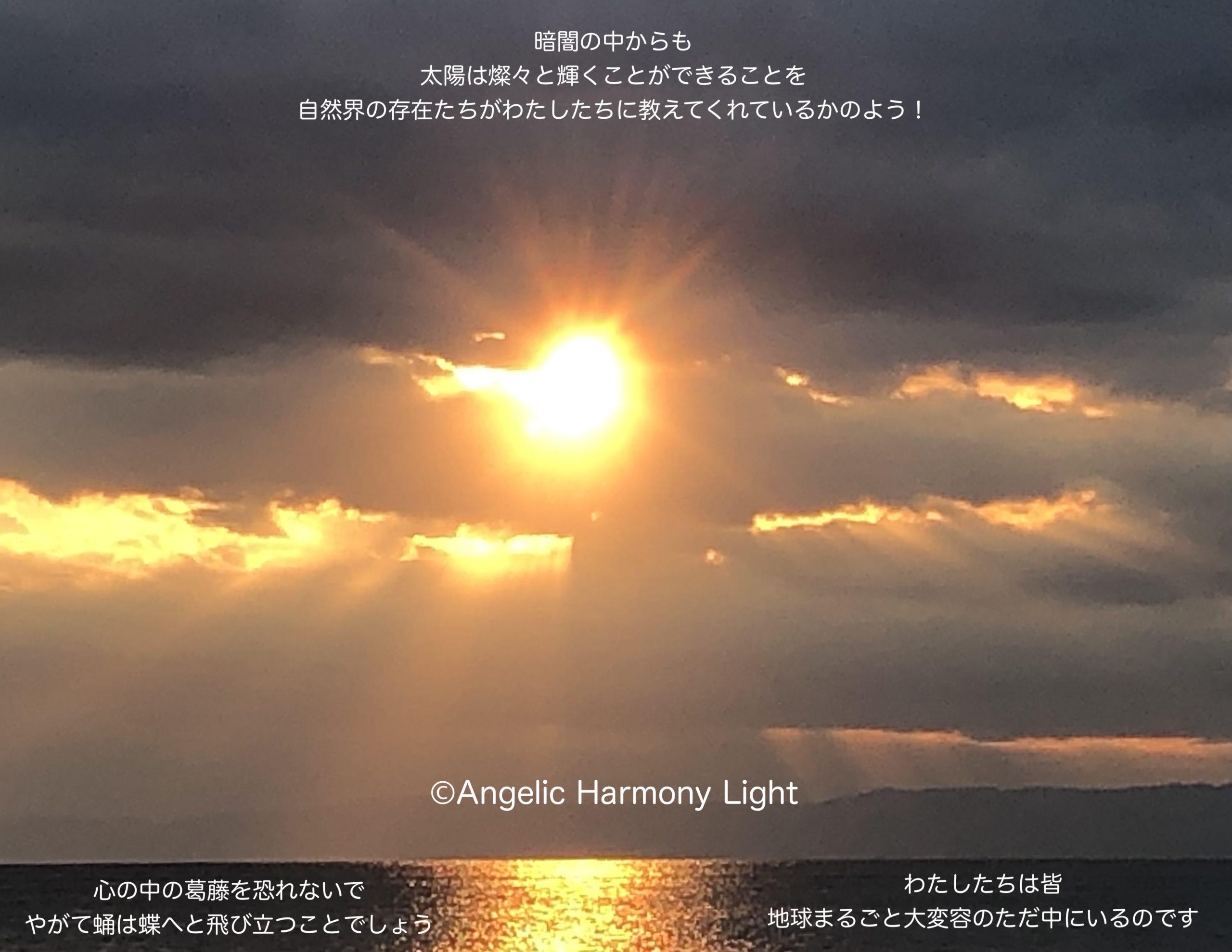 暗闇の中からも太陽は燦々と輝くことができることを自然界の存在たちが教えてくれているかのようです。